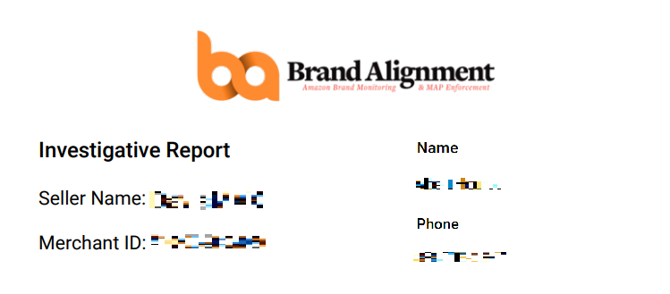 Brand Alignment Investigation Report